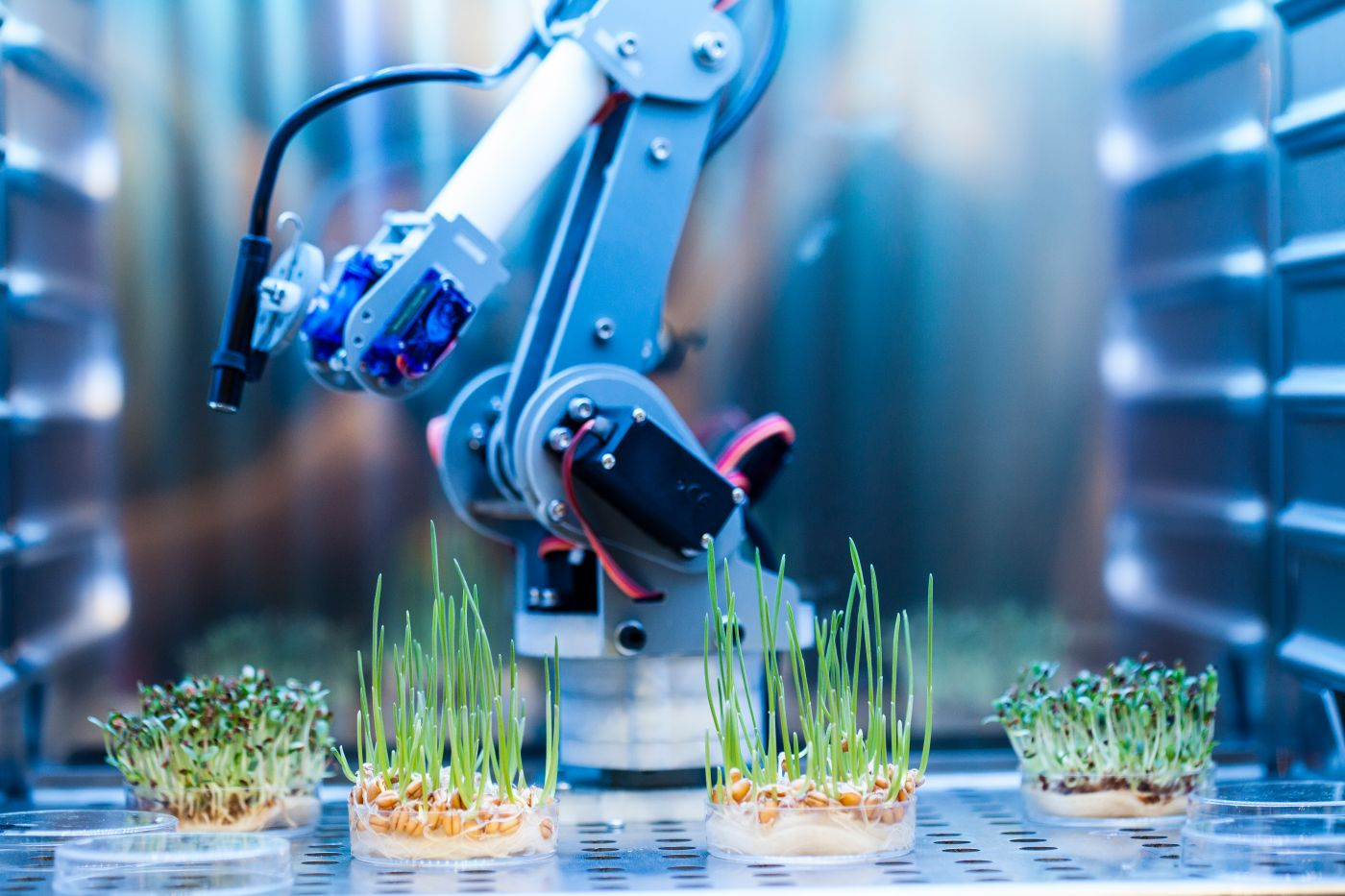Enveric Biosciences (ENVB) Stock Extends Rally: Up 40% In A Week, Here is Why